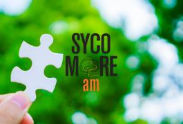 Zoom sur Sycomore Eco Solutions : un fonds pour répondre aux enjeux de la transition écologique et énergétique
