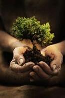 ISR : Schroders démythifie les critères d'exclusion ESG